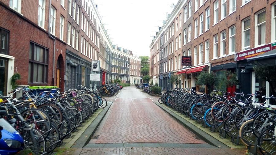 Амстердамский марафон. Отчет участника